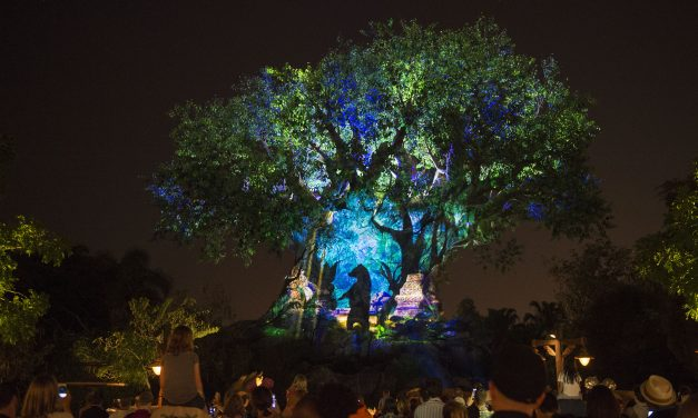 ResortLoop.com Episode 597 – Top 5 Favorite Spots – Disney's Animal Kingdom